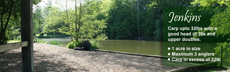 Jenkins Lake